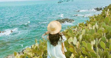Tour Tết Phú Yên tham quan nơi nào?